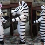 Ростовая кукла зебра, арендовать ростовую куклу зебру, зебра ростовая кукла